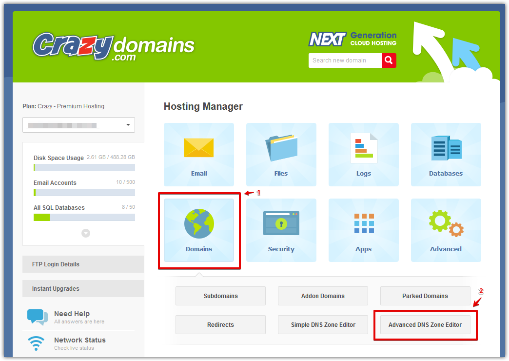 Access Crazy Domains DNS zone