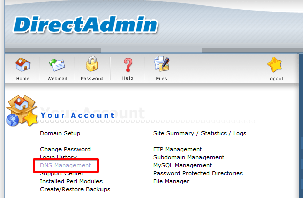 How to access DirectAdmin DNS records editor
