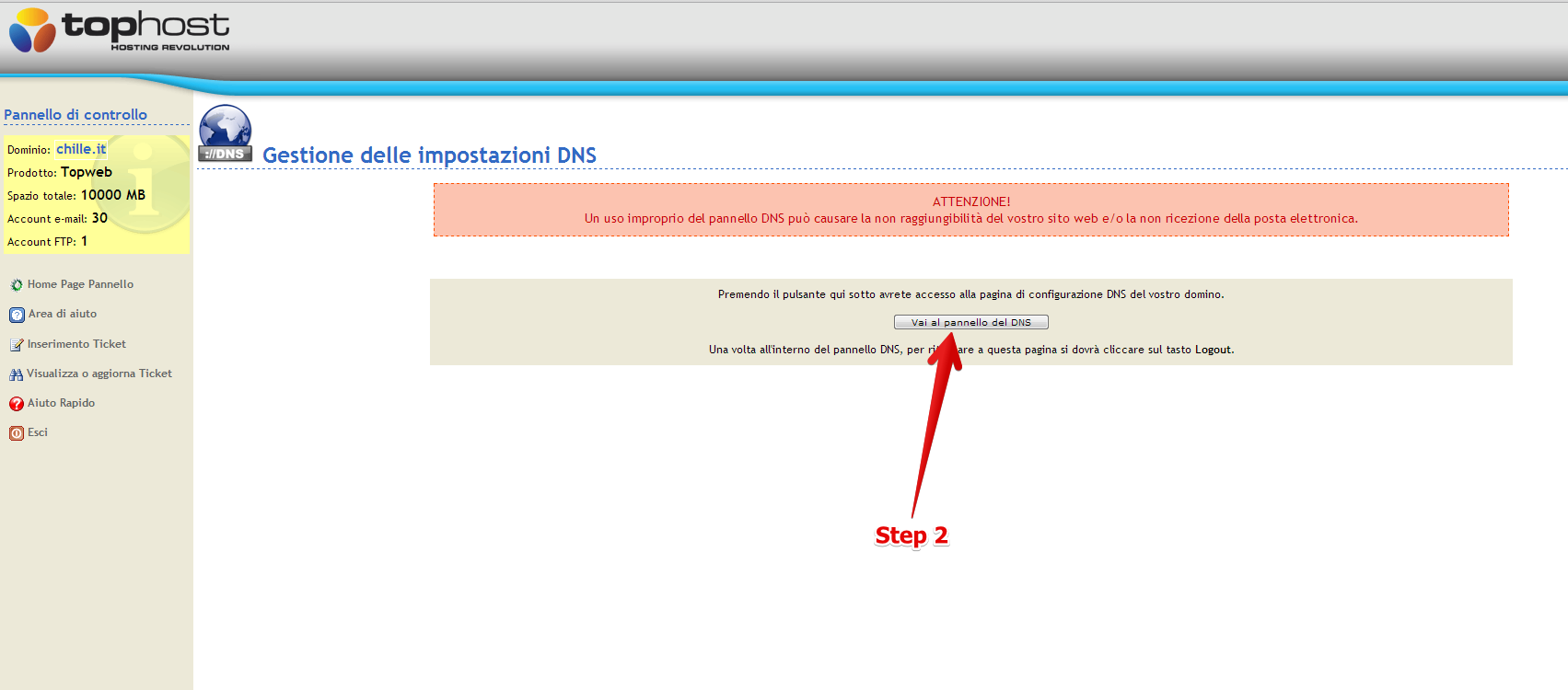 Access TopHost DNS zone
